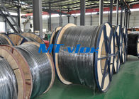 ASTM A269 TP316 / 316L Welded Multi - Core Coiled Stainless Tubing Bright Annealed nhà cung cấp